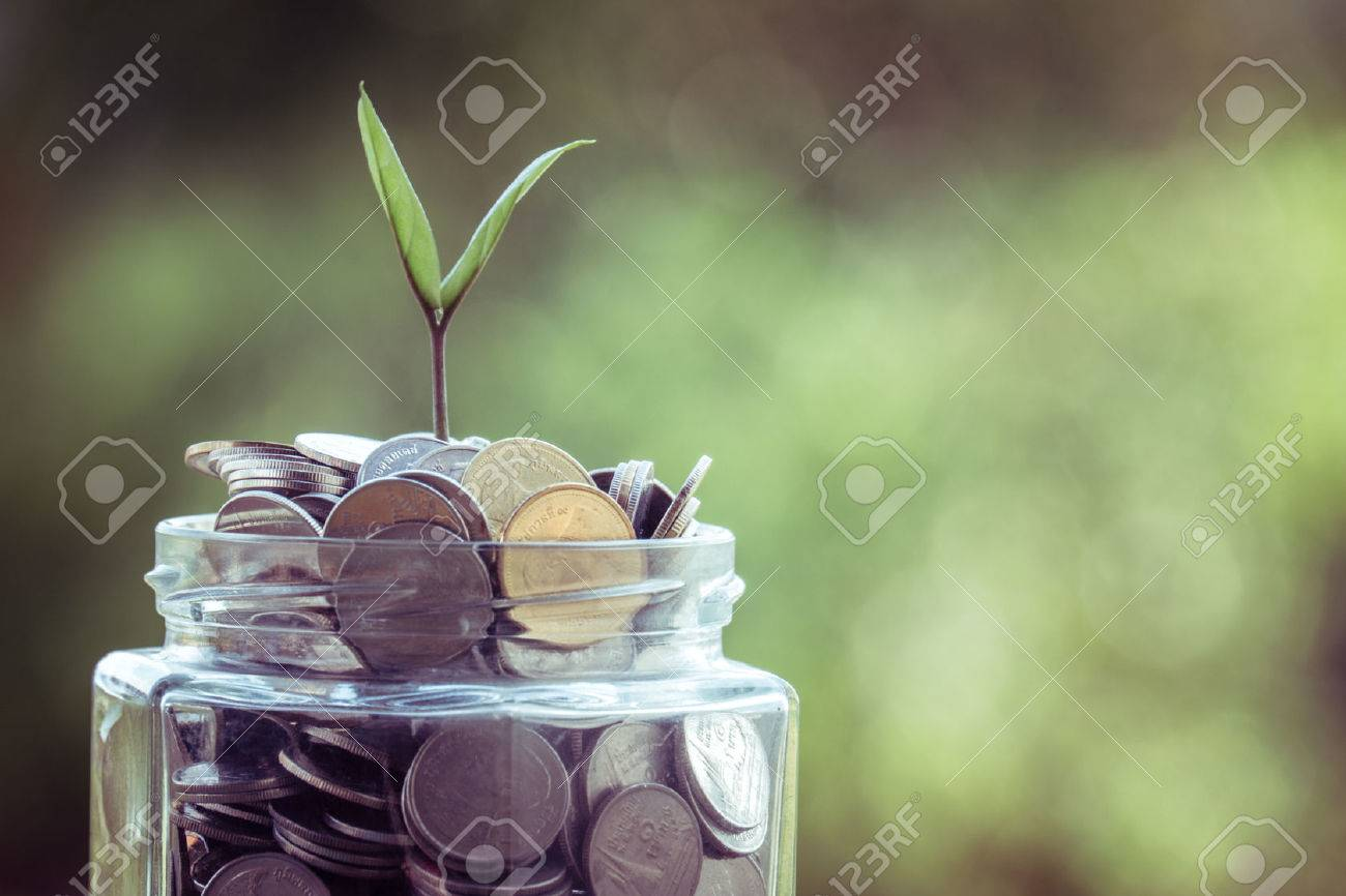 plant growing out of coins with filter effect retro vintage style Stock Photo - 39964925