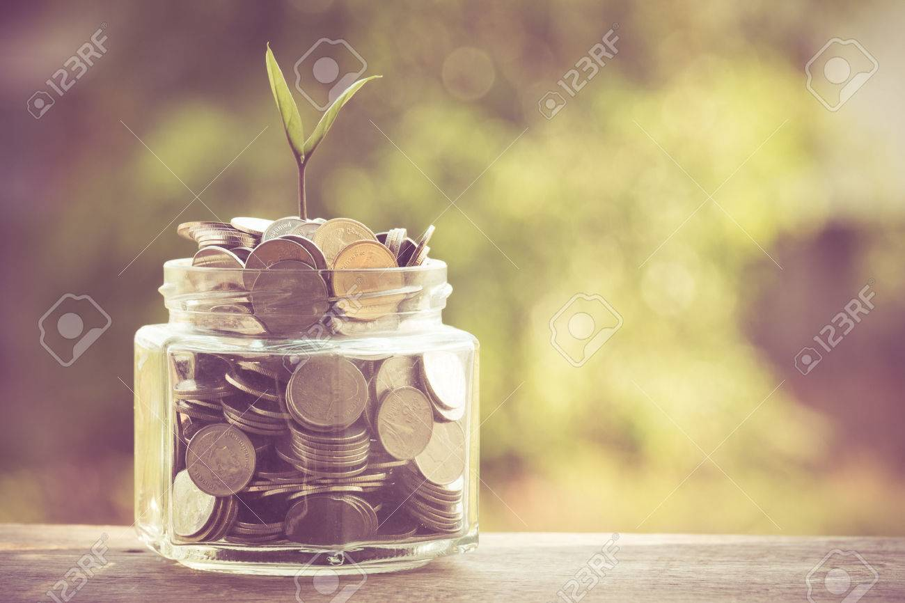 plant growing out of coins with filter effect retro vintage style Stock Photo - 40641166