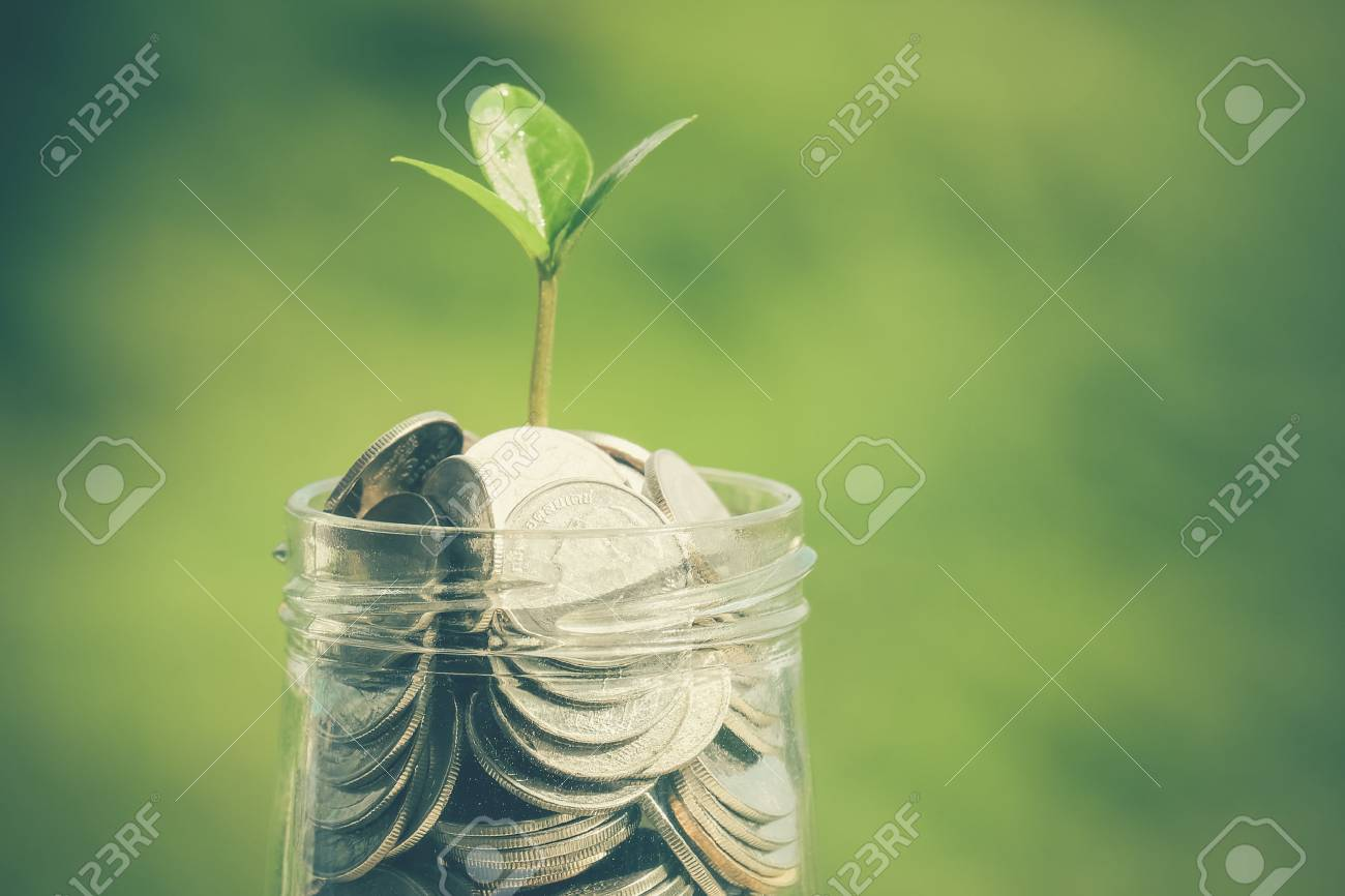 plant growing out of coins with filter effect retro vintage style Stock Photo - 41701582
