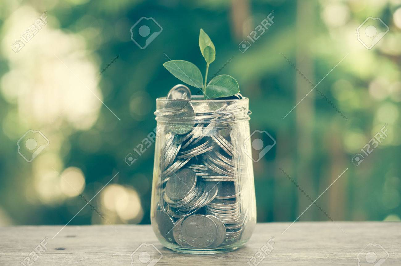 plant growing out of coins with filter effect retro vintage style Stock Photo - 41934902
