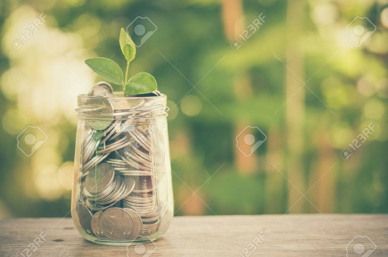 plant growing out of coins with filter effect retro vintage style Stock Photo - 42253452