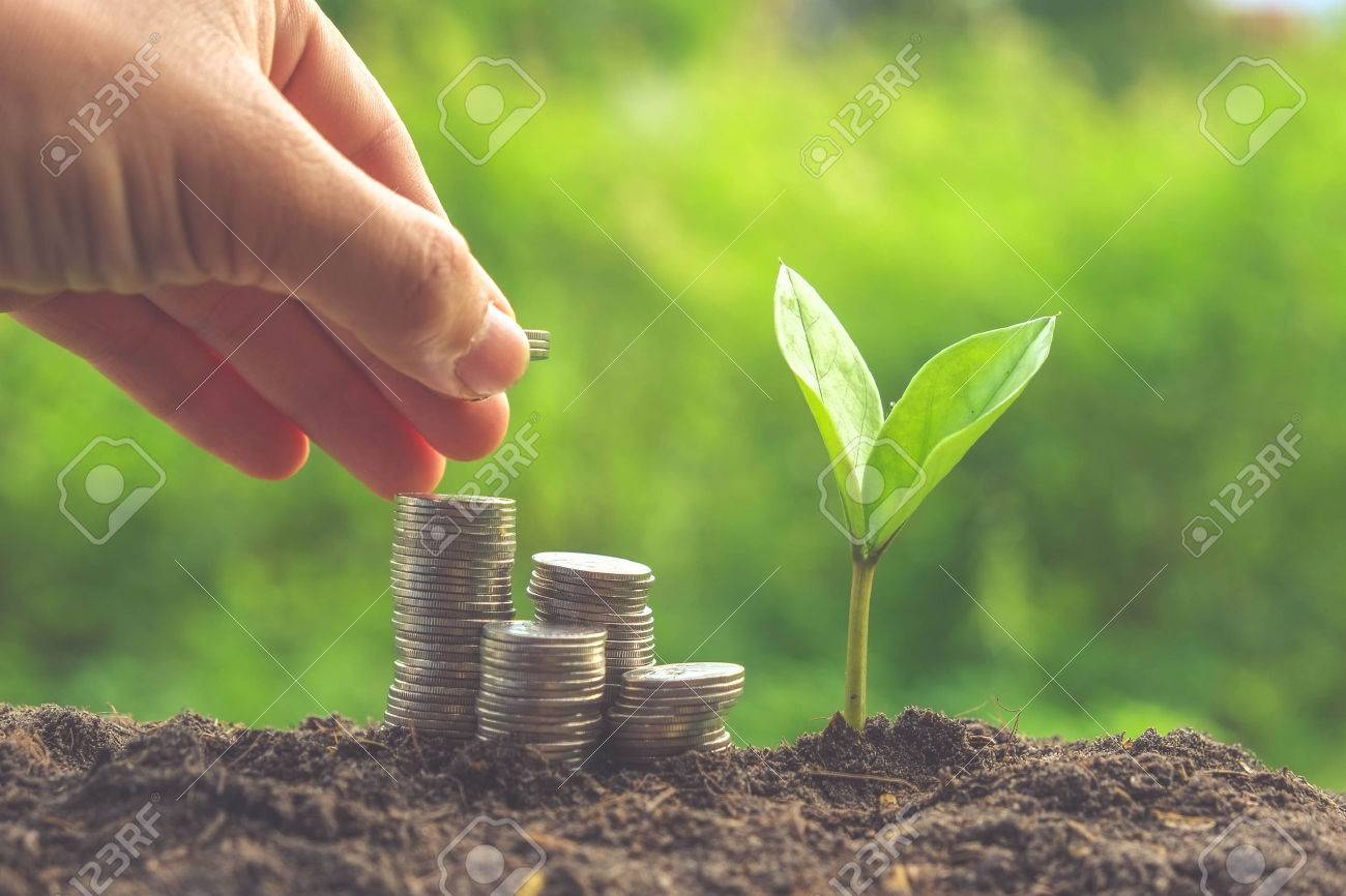 Money and plant with hand with filter effect retro vintage style Stock Photo - 44153867
