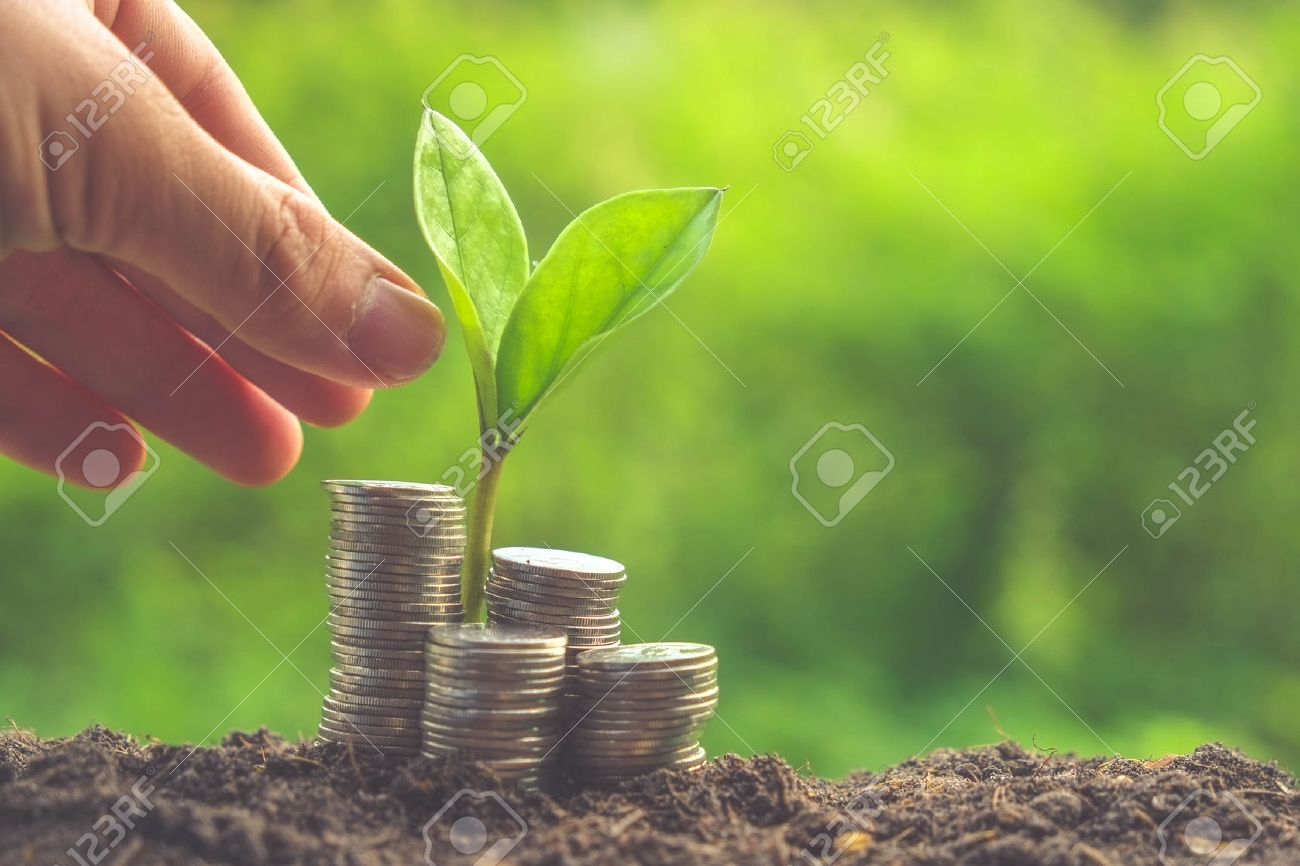 Money and plant with hand with filter effect retro vintage style Stock Photo - 44989994