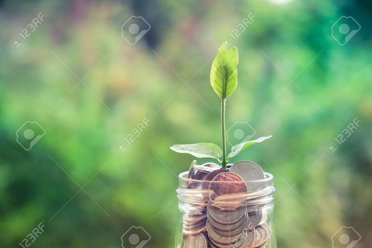 Sprout growing on glass piggy bank in saving money concept with filter effect retro vintage style Stock Photo - 46602374