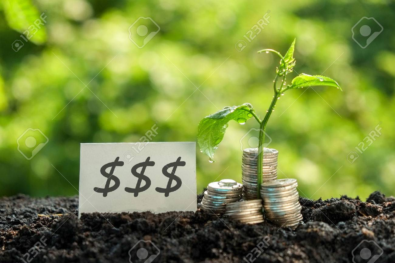 save money for investment concept Stock Photo - 47356832