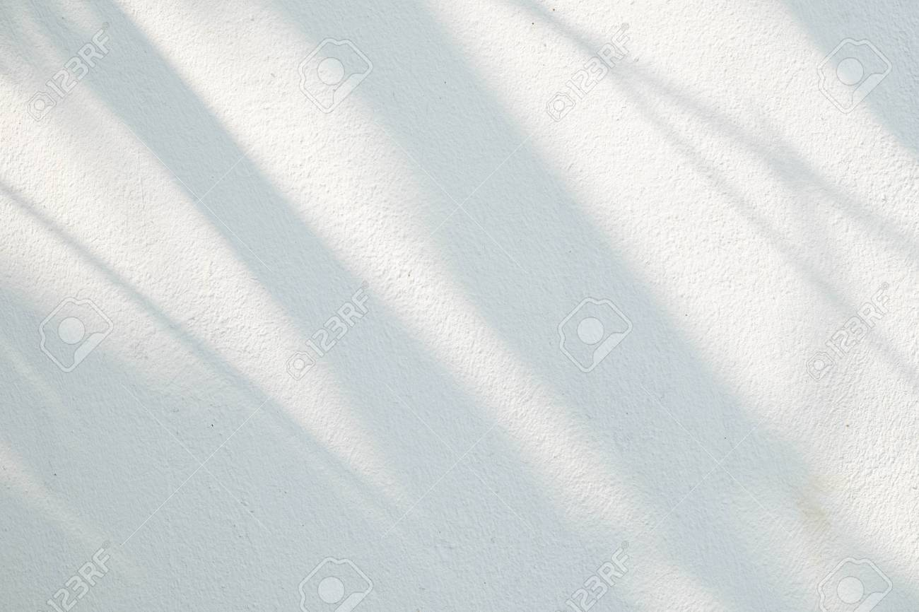 Black and White abstract background textuer of shadows leaf on a concrete wall. - 97595126