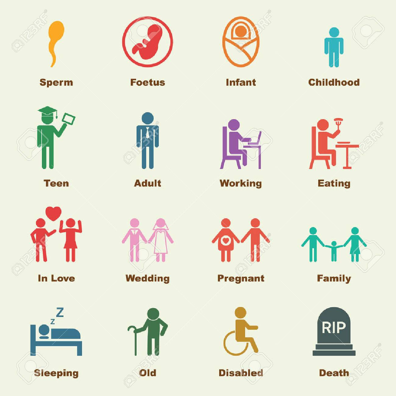 human life cycle stock photos images     royalty free human    human life cycle  human life elements  vector infographic icons