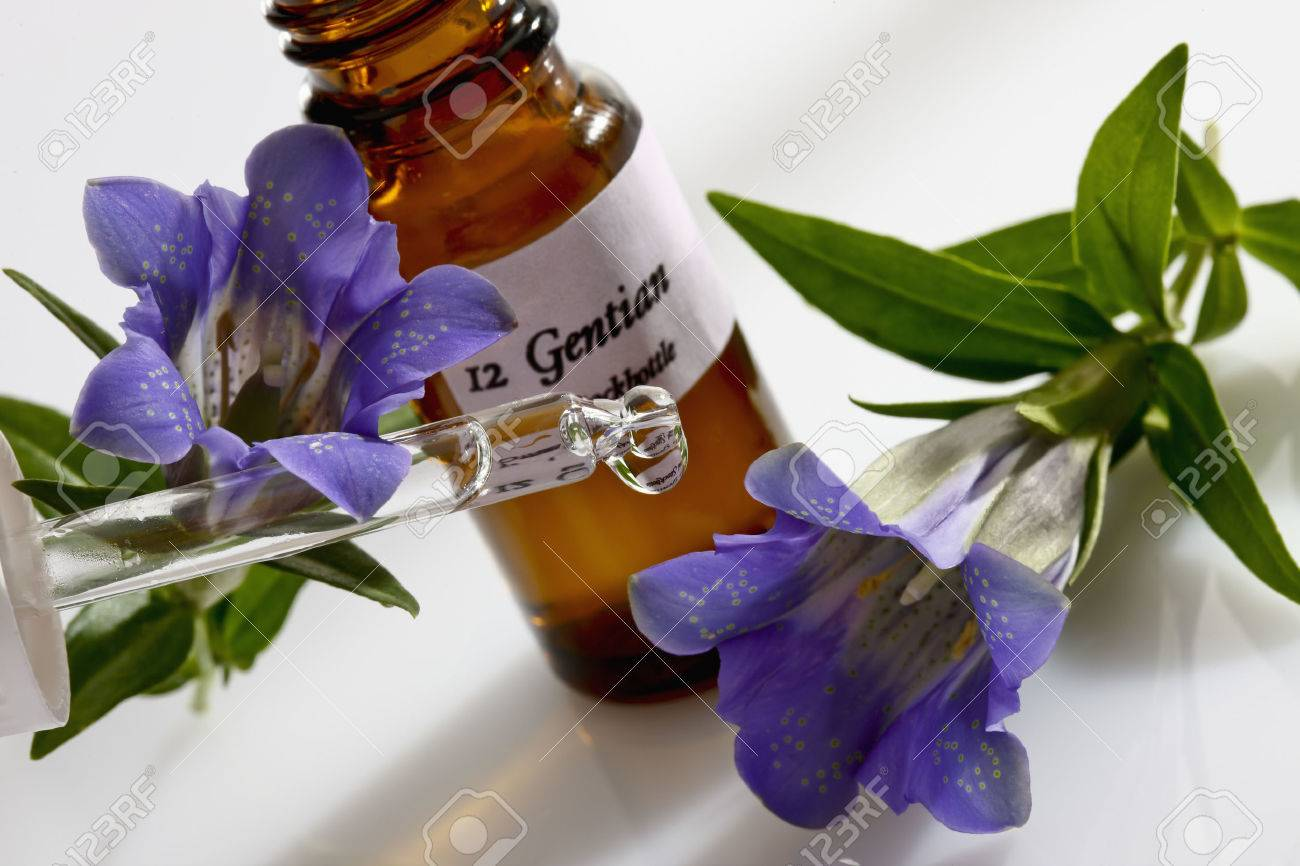 Gentian and pipette, apothecary flask - 38582443