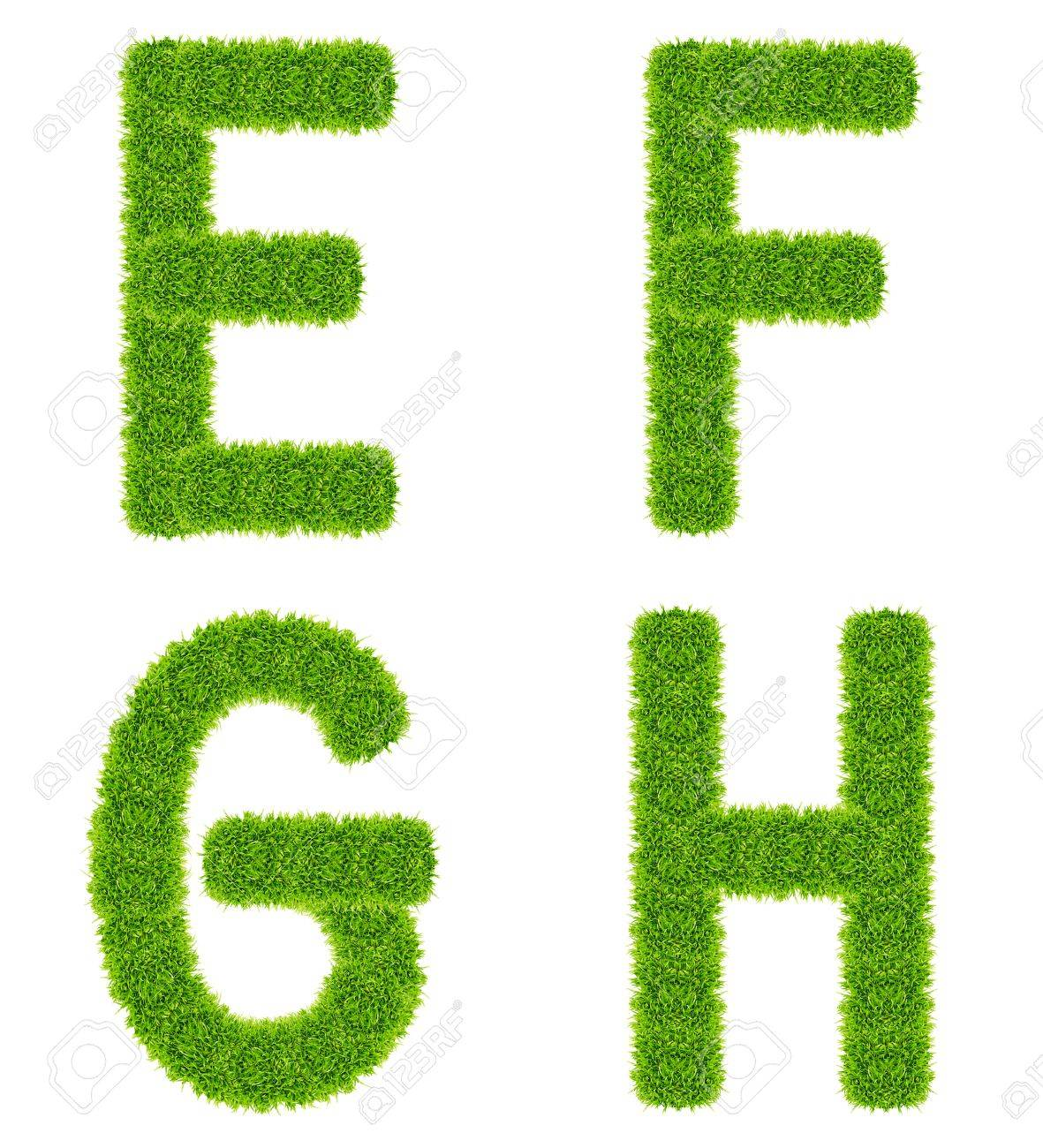 green grass letter efgh isolated Stock Photo - 9943533