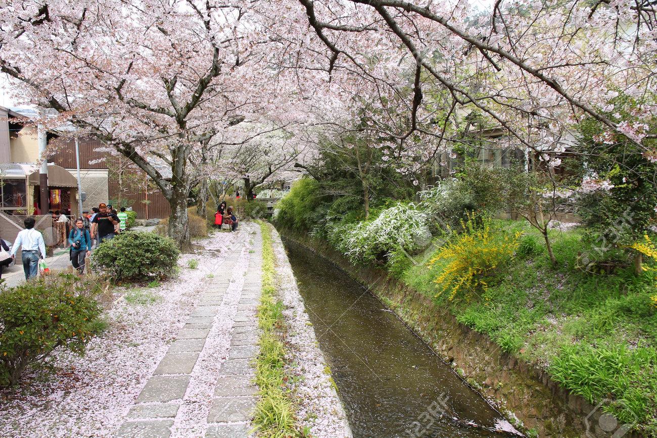 Resultado de imagen de el paseo del filosofo kyoto