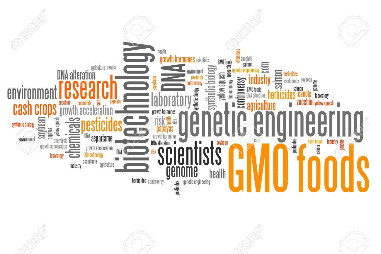 speech on genetically modified foods Corporate social responsibility dissertation topi persuasive speech about genetically motified foods how to write a personal essay for a college application college.