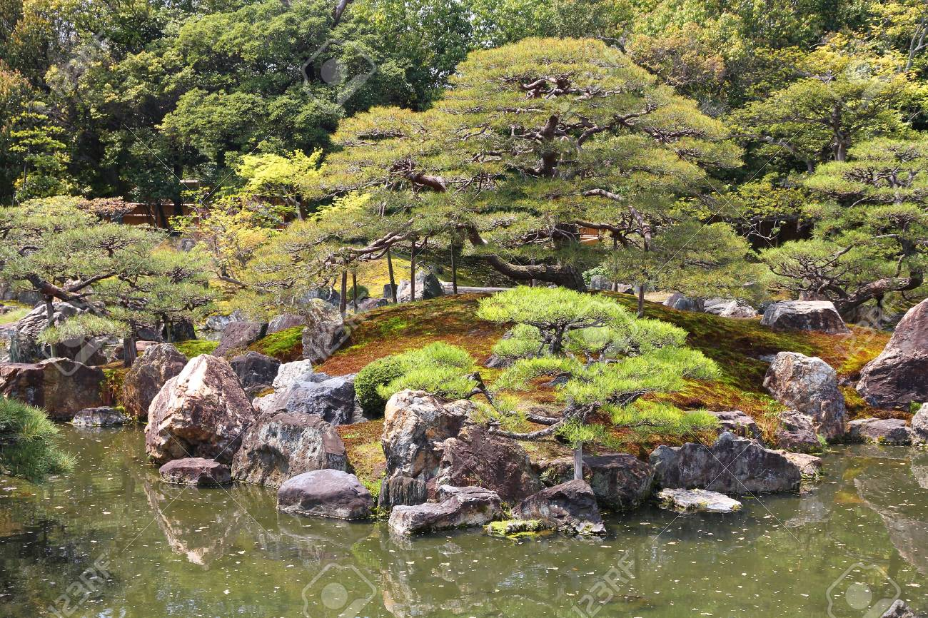 Japanese garden in Kyoto, Japan. Ninomaru Garden of Nijo Castle. Stock Photo -