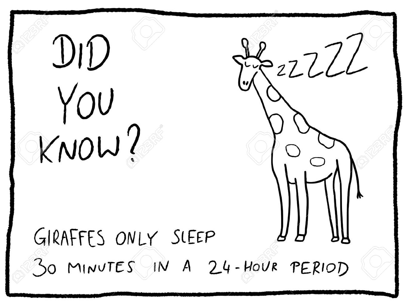 Animal facts about giraffe - fun trivia cartoon doodle concept. Newspaper funny comic fact. - 64860644