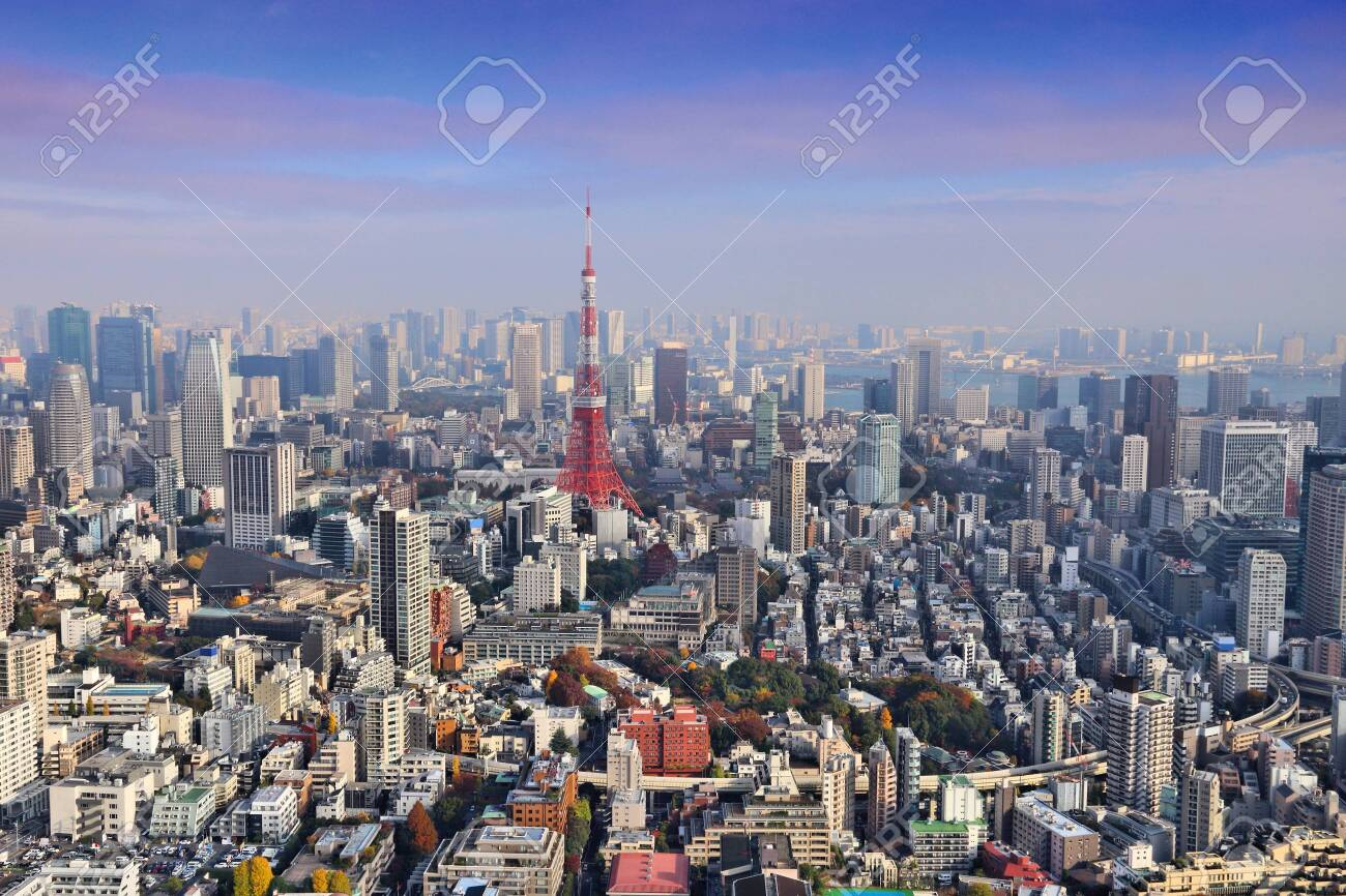 Tokyo skyline - aerial city view with Roppongi and Minato wards. - 131425305