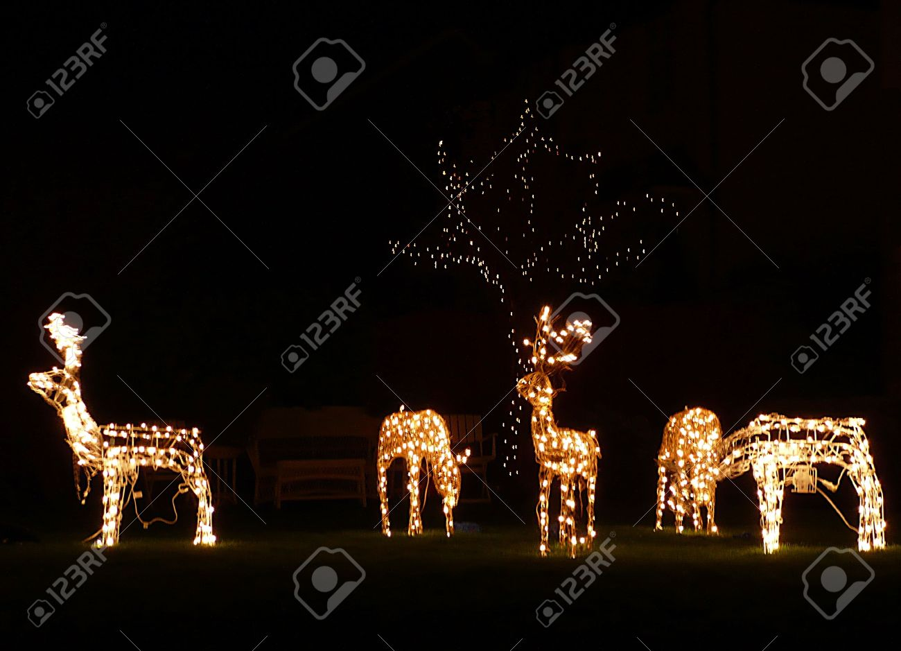 Christmas outdoor decorations lit reindeer south west england christmas outdoor decorations lit reindeer south west england stock photo 9937397 aloadofball Image collections