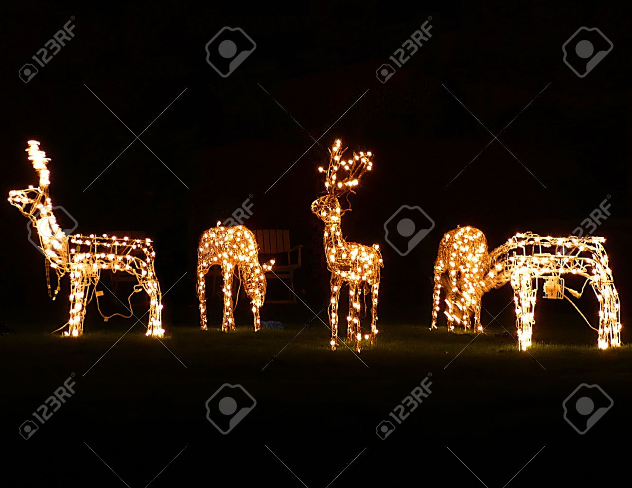 Christmas Outdoor Decorations, Lit Reindeer Grazing, South West England  Stock Photo   4068336