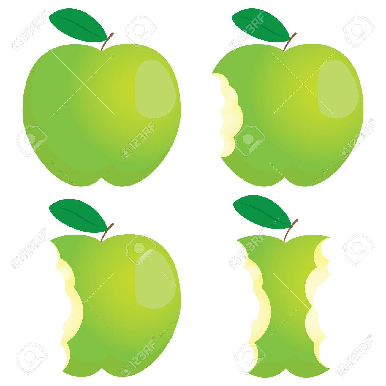 Green nibbled apple. Different states. Stock Vector - 8987453