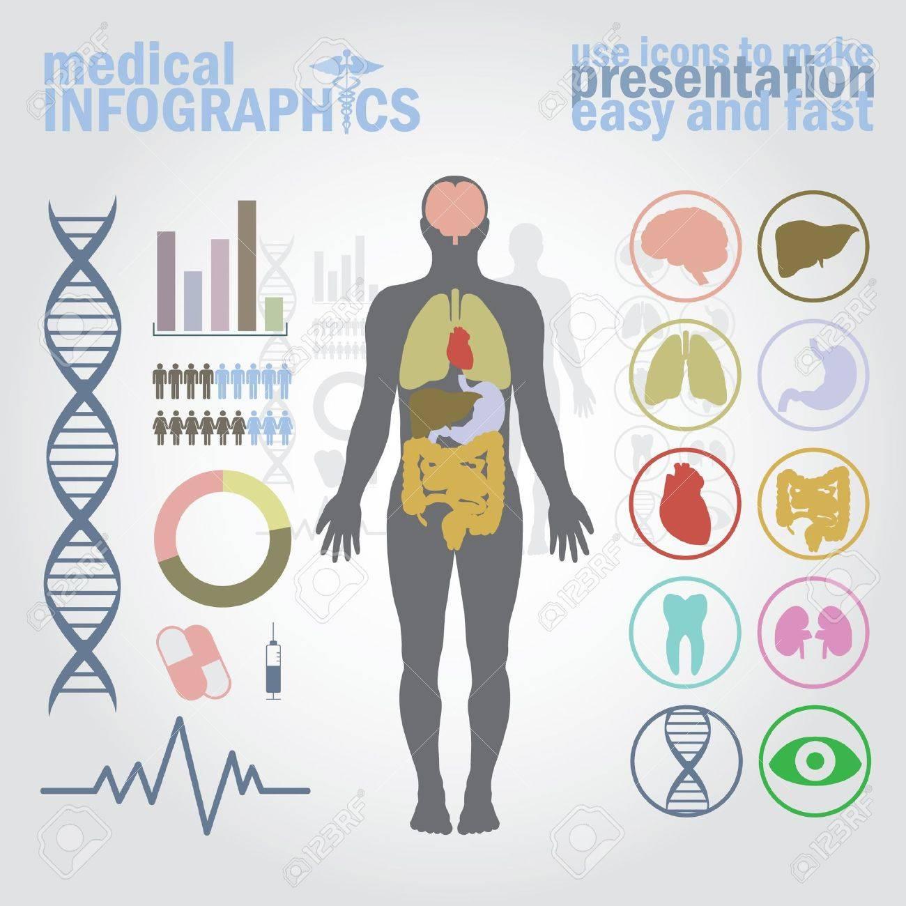 Medical infographics. Presentation set. Human body with internal organs plus buttons. Diagram (graph), cardio gram. - 10775563