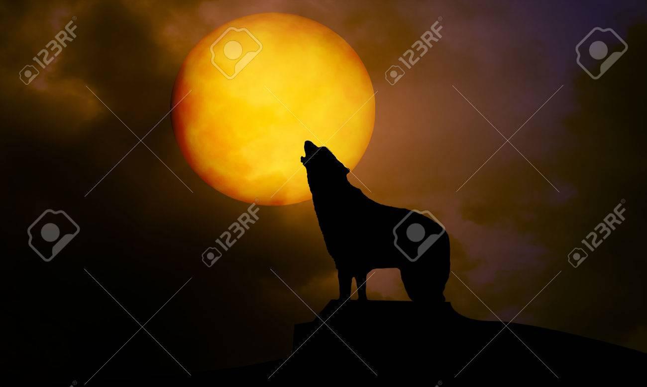 dog and moon at night - 22268334