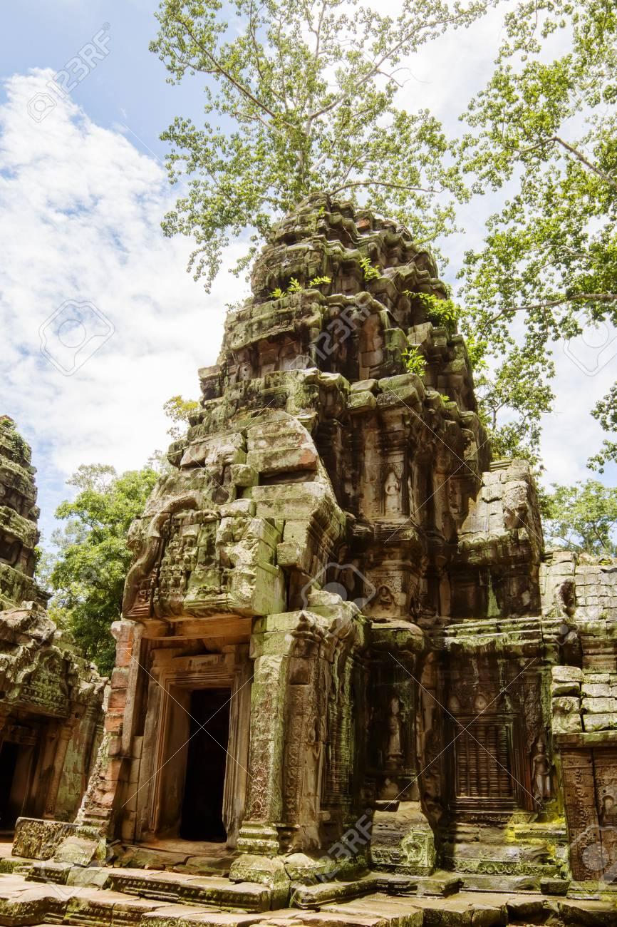 Ancient Ta Prohm or Rajavihara Temple  at Angkor, Siem Reap, Cambodia Stock Photo - 14968971