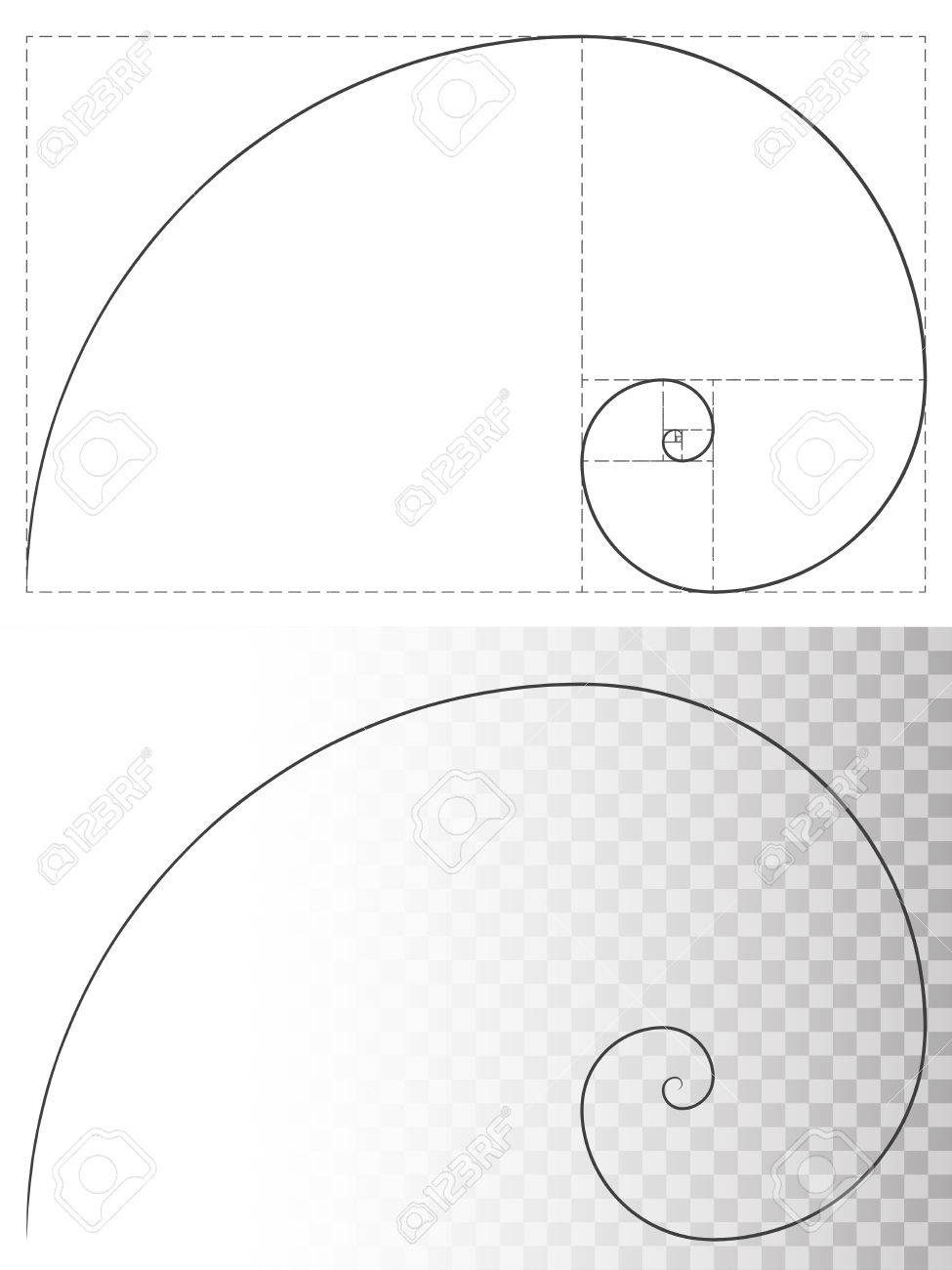 golden ratio spiral line vector template beauty and harmony