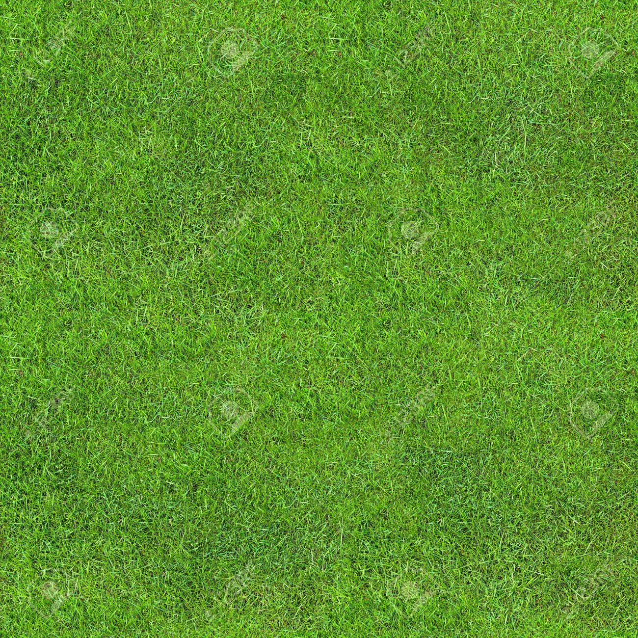 Seamless Green Lush Grass Texture. Fresh Backdrop. - 121023606