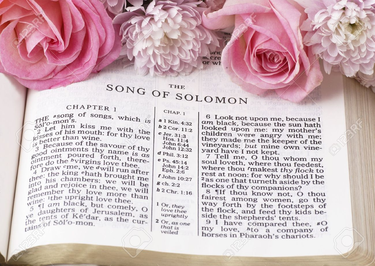 Holy bible opened on song of solomon and flowers stock photo holy bible opened on song of solomon and flowers stock photo 20924406 mightylinksfo