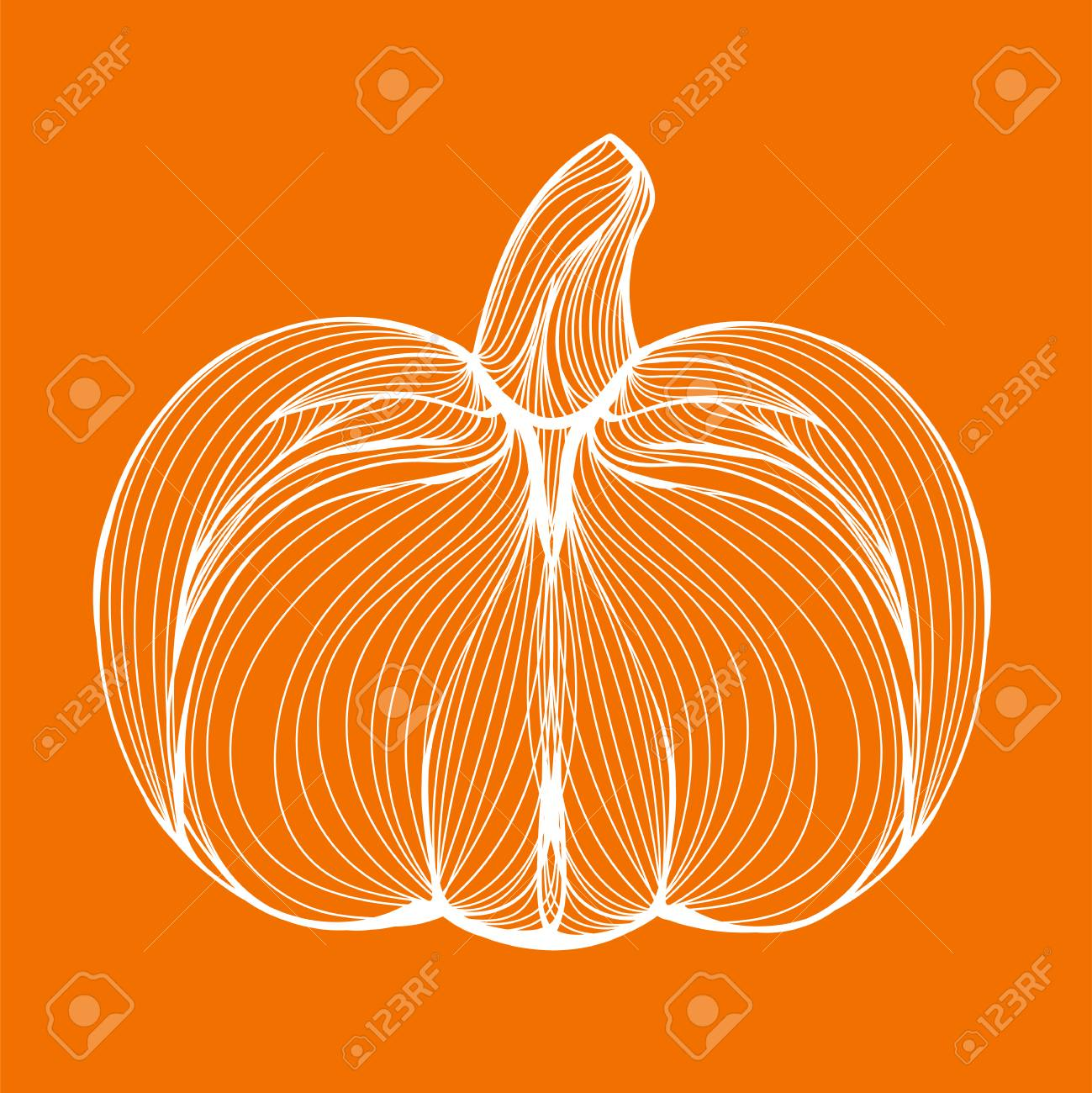 Halloween Afkomst.Vector Illustratie Van Een Afkomstig Uit Witte Lijnen Halloween Pompoen Of Plantaardige Assepoester Op Oranje Achtergrond