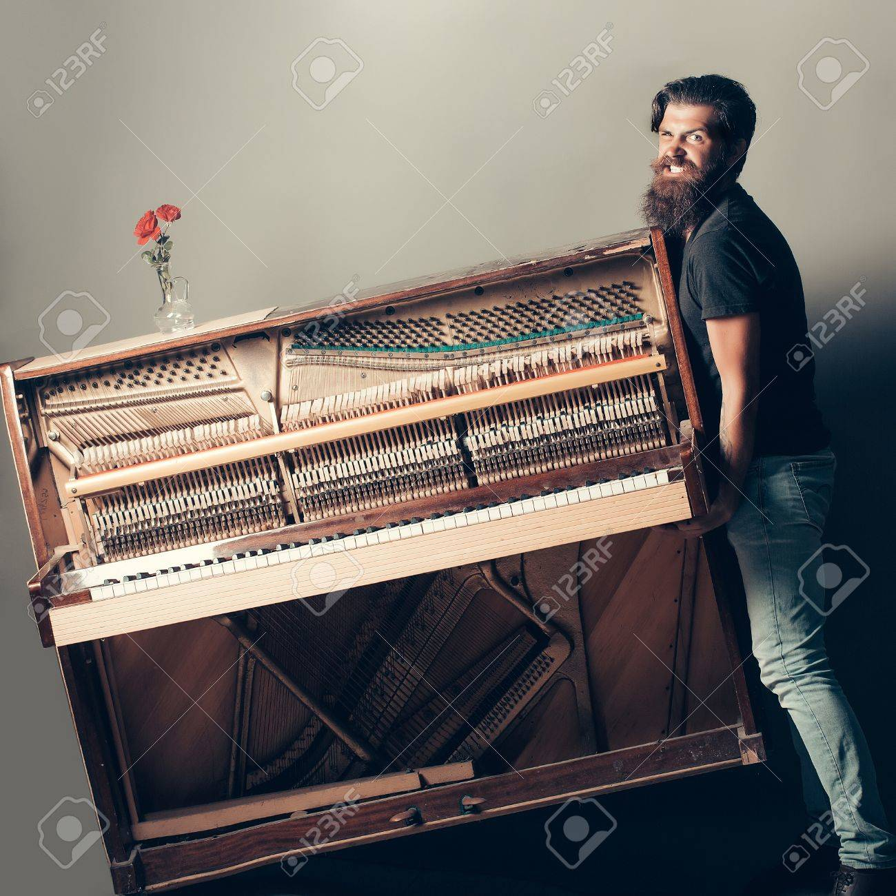 handsome bearded strong man with stylish hair mustache and beard trying to move old wooden or wood open piano with keyboard and glass vase with red rose flowers on grey background, copy space - 63549403