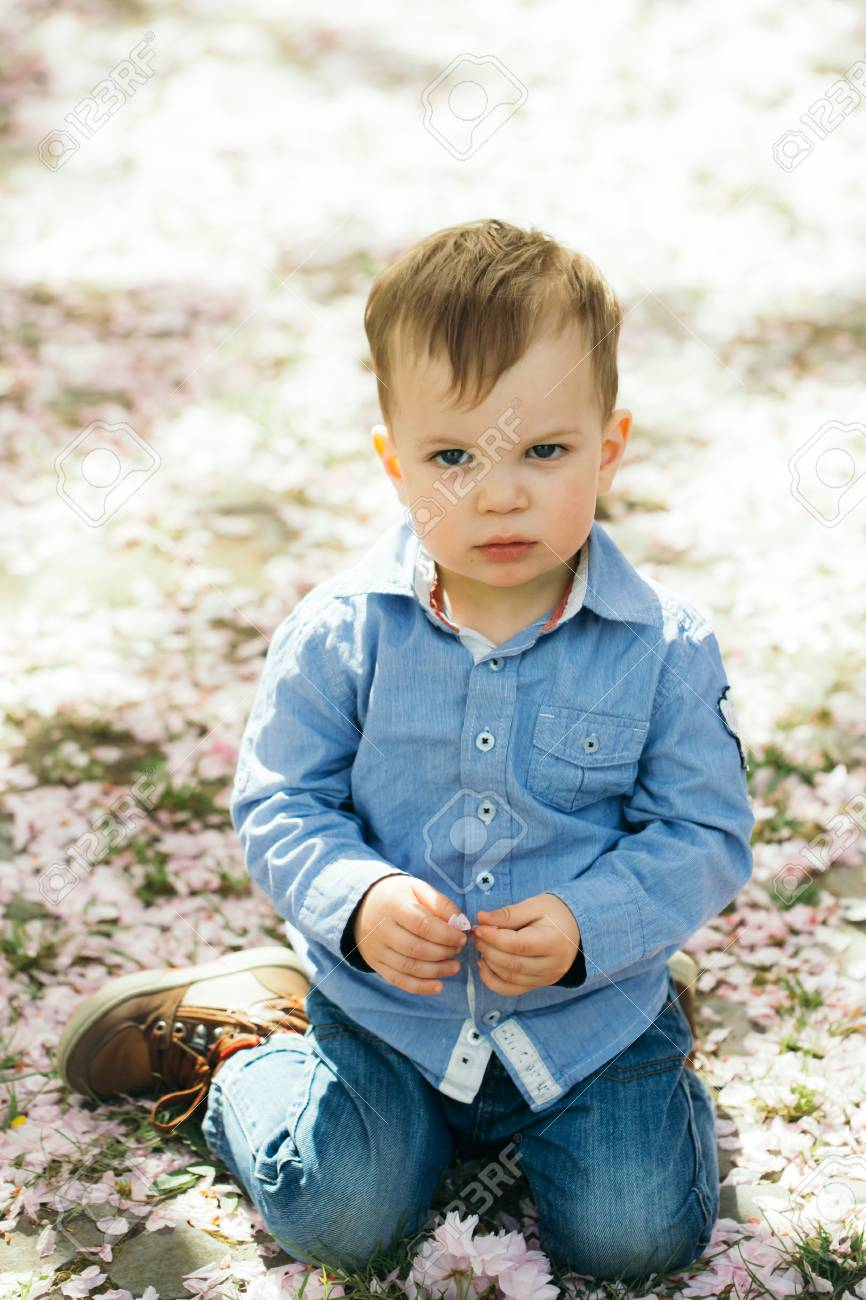 83a6e169ed65 Cute baby boy, little child, with blond hair in blue shirt and jeans  sitting on ground covered with pink cherry, sakura, blossoming flower  petals on sunny, ...