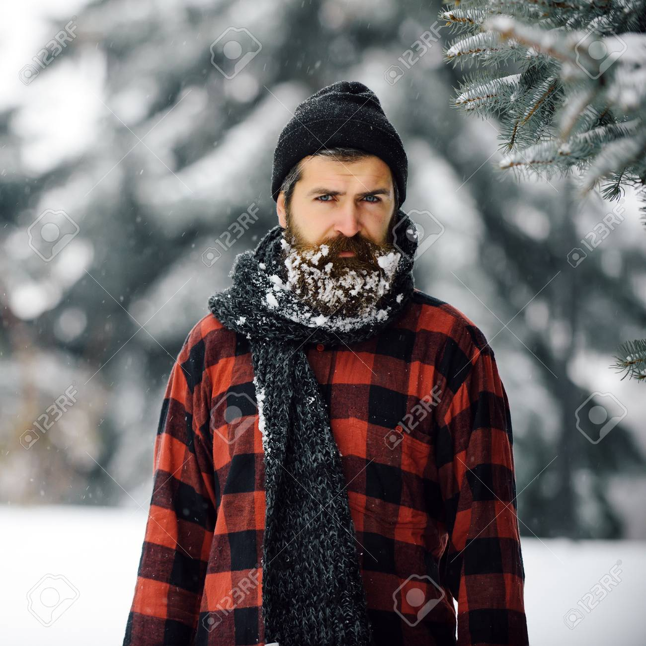 69cf2065f04 Christmas hipster in hat at wood. New year man in snowy cold forest. Winter
