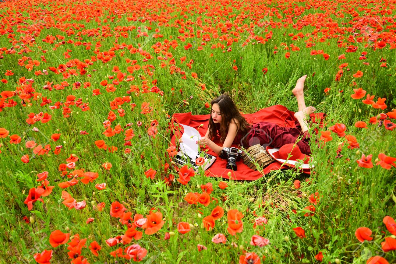 Poppy remembrance or anzac day poppy flower field with woman poppy remembrance or anzac day poppy flower field with woman writing stock photo mightylinksfo Gallery