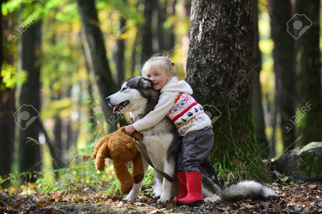 Little girl embracing husky dog in autumn park - 102298974