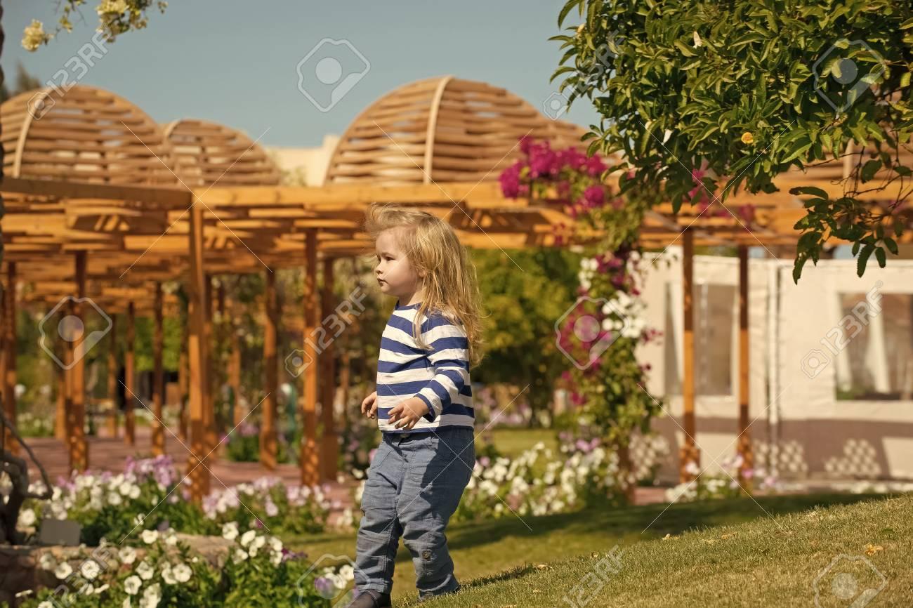 Child In A Flower Garden. Baby Boy Walking On Garden Yard With ...