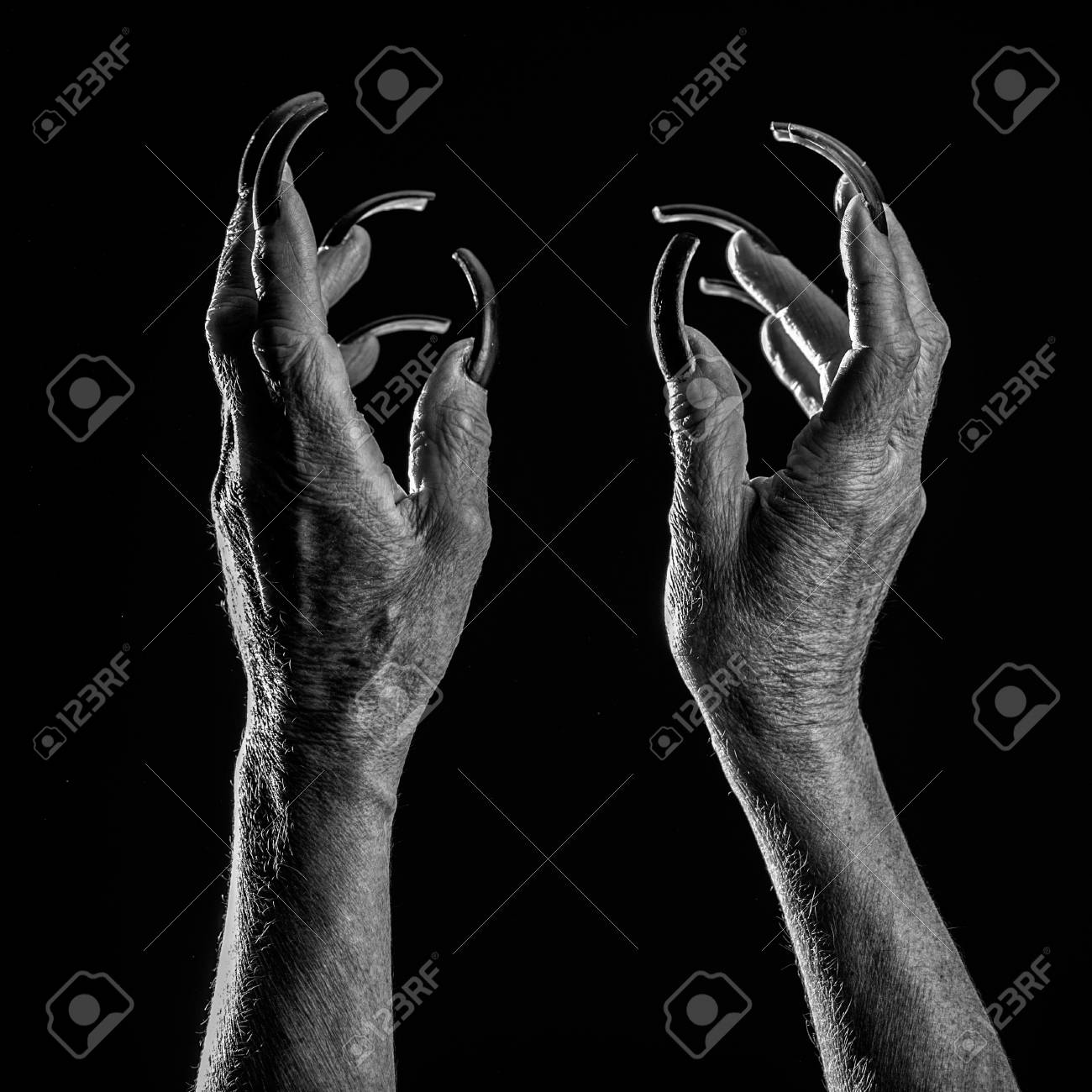 Horror Movie Old Female Hands With Long Nails Stock Photo Picture