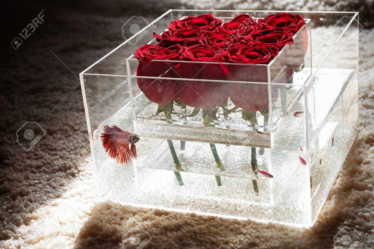 Floral Design Valentines Day Present Red Rose Bouquet In Box