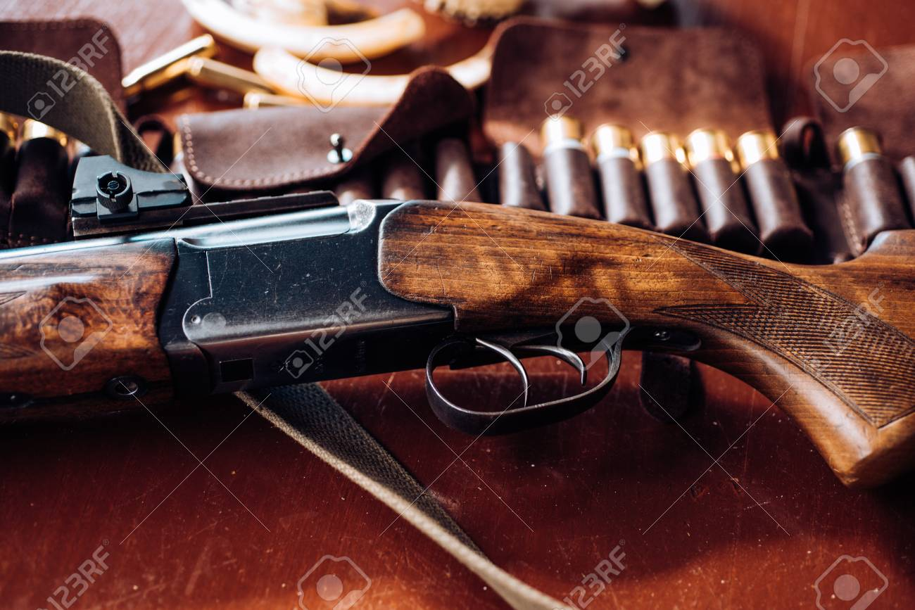 Pulled the trigger of the shotgun. Closed and open hunting season. Hunting equipment. - 113645864