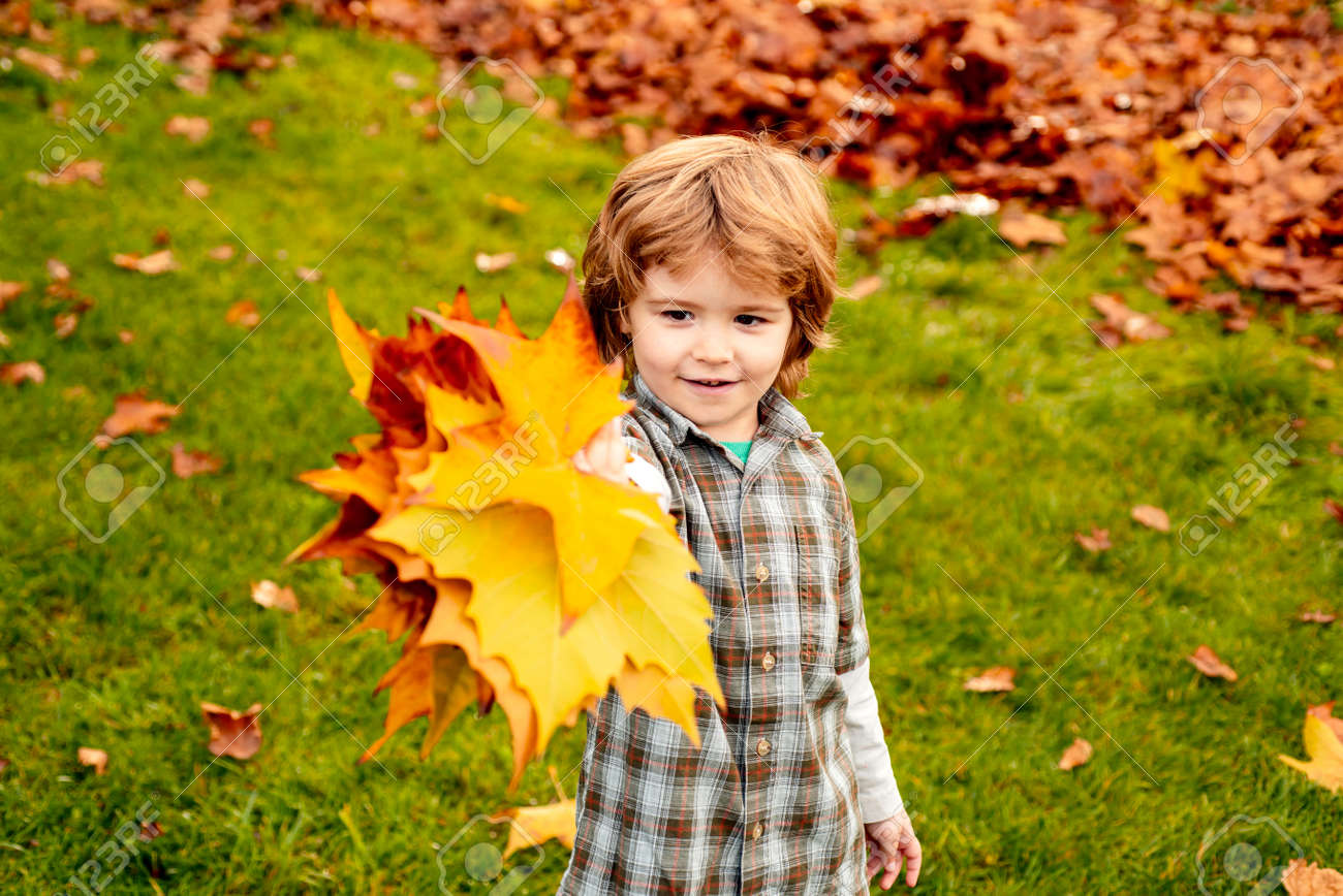 Autumn outdoor portrait of cute child boy walking in park or forest in warm knitted scarf. - 153090096