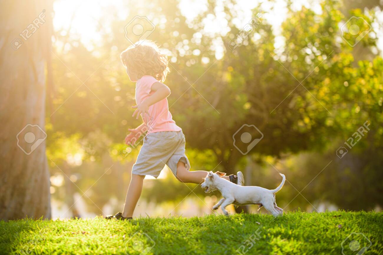 Boy child walk with puppy. Kid with pets running. Happy Child and dog runs at backyard lawn. - 154663329