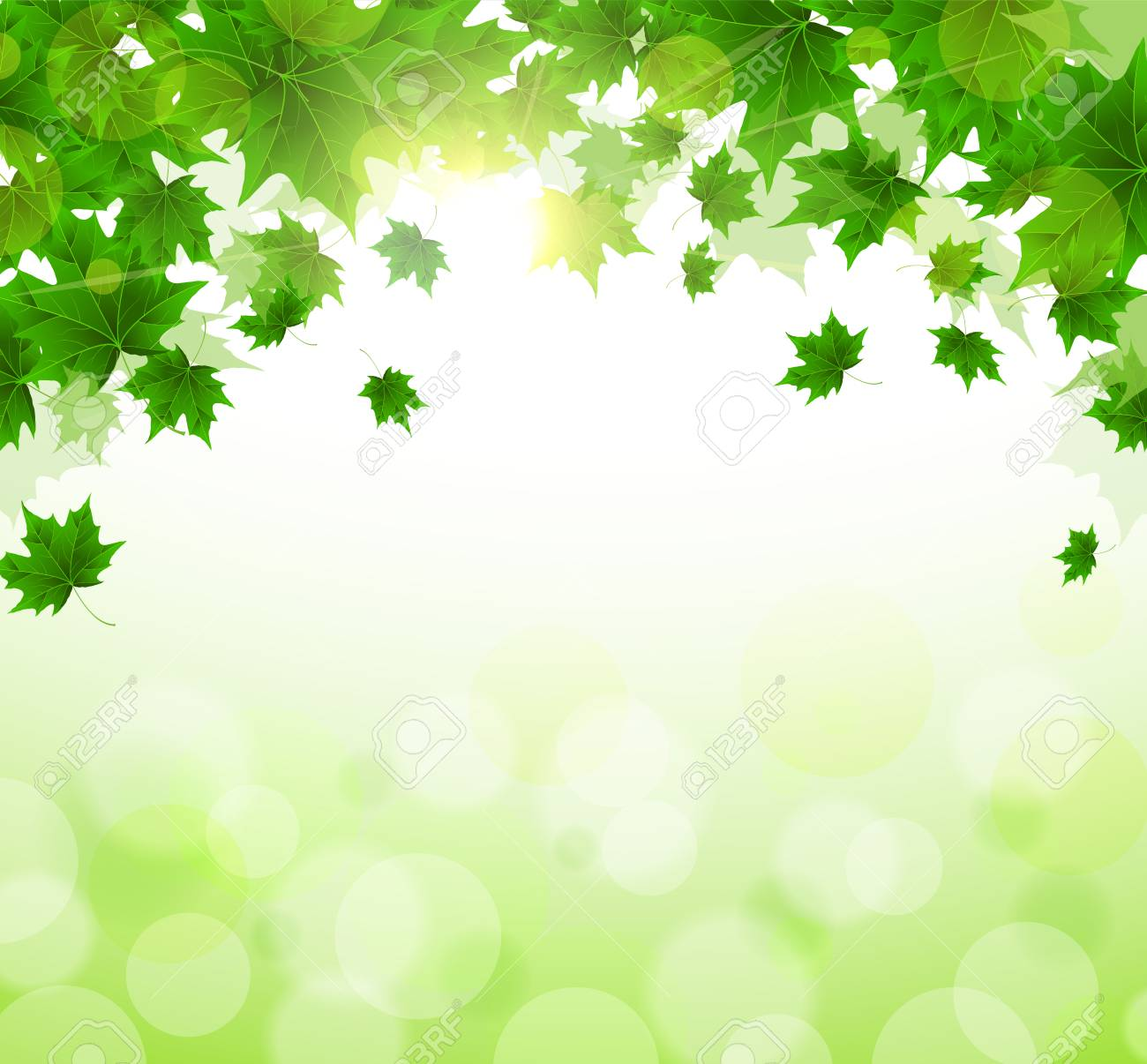 Frame of fresh green leaves of maple. Sunny spring or summer day. Awakening of nature. Cover or background for an article. Copy space. - 125421100