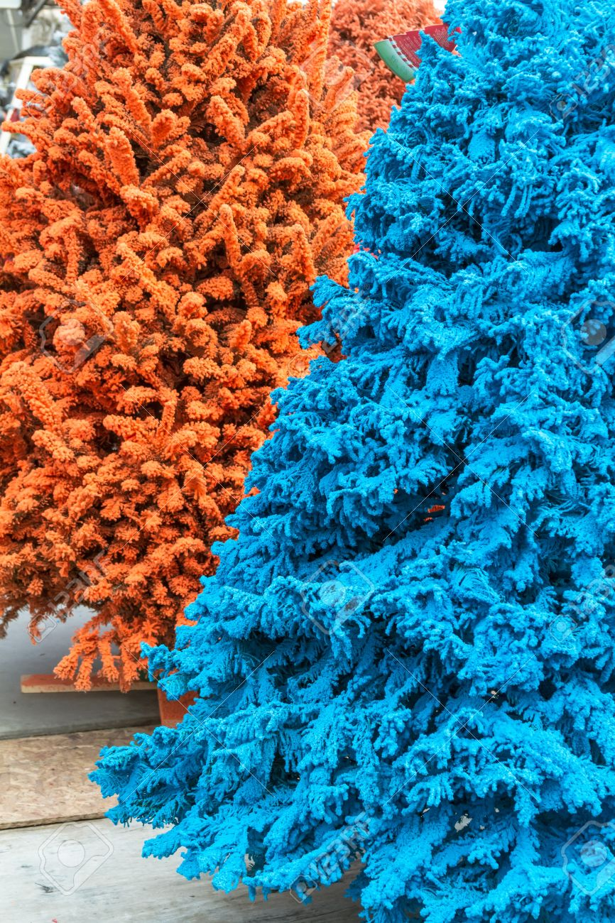 Blue And Orange Flocked Christmas Trees Stock Photo Picture And Royalty Free Image Image 16944631