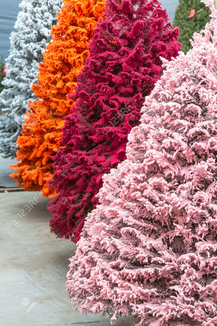 Multi Colored Flocked Christmas Trees Stock Photo Picture And Royalty Free Image Image 16944688