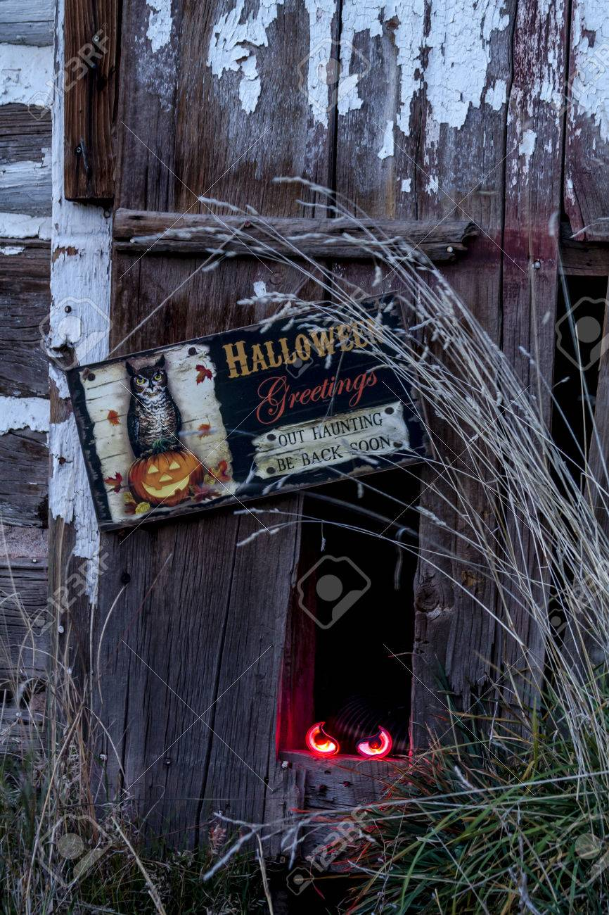 scary halloween glowing eyes in hole in old abandoned wood