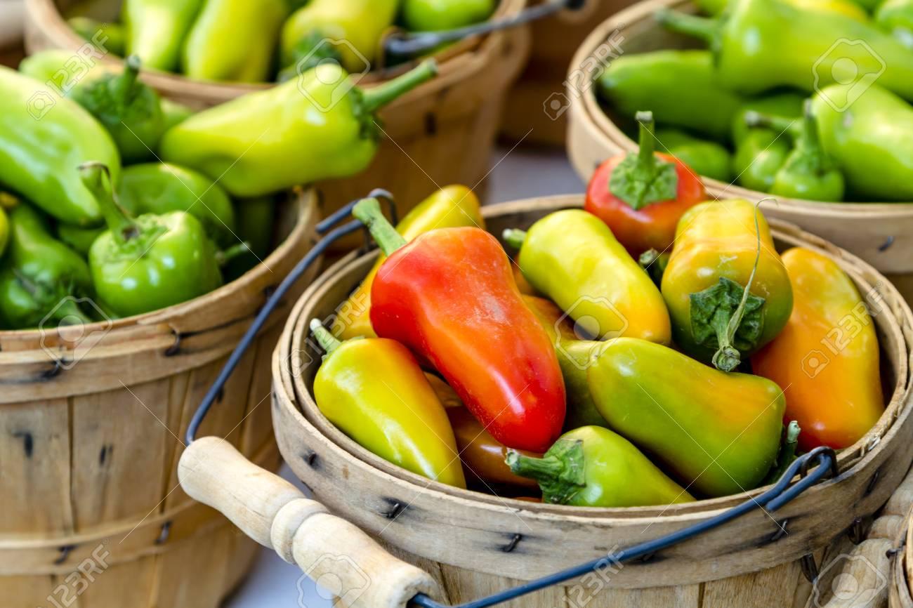 Bushel baskets filled with organically grown hot pepper varieties