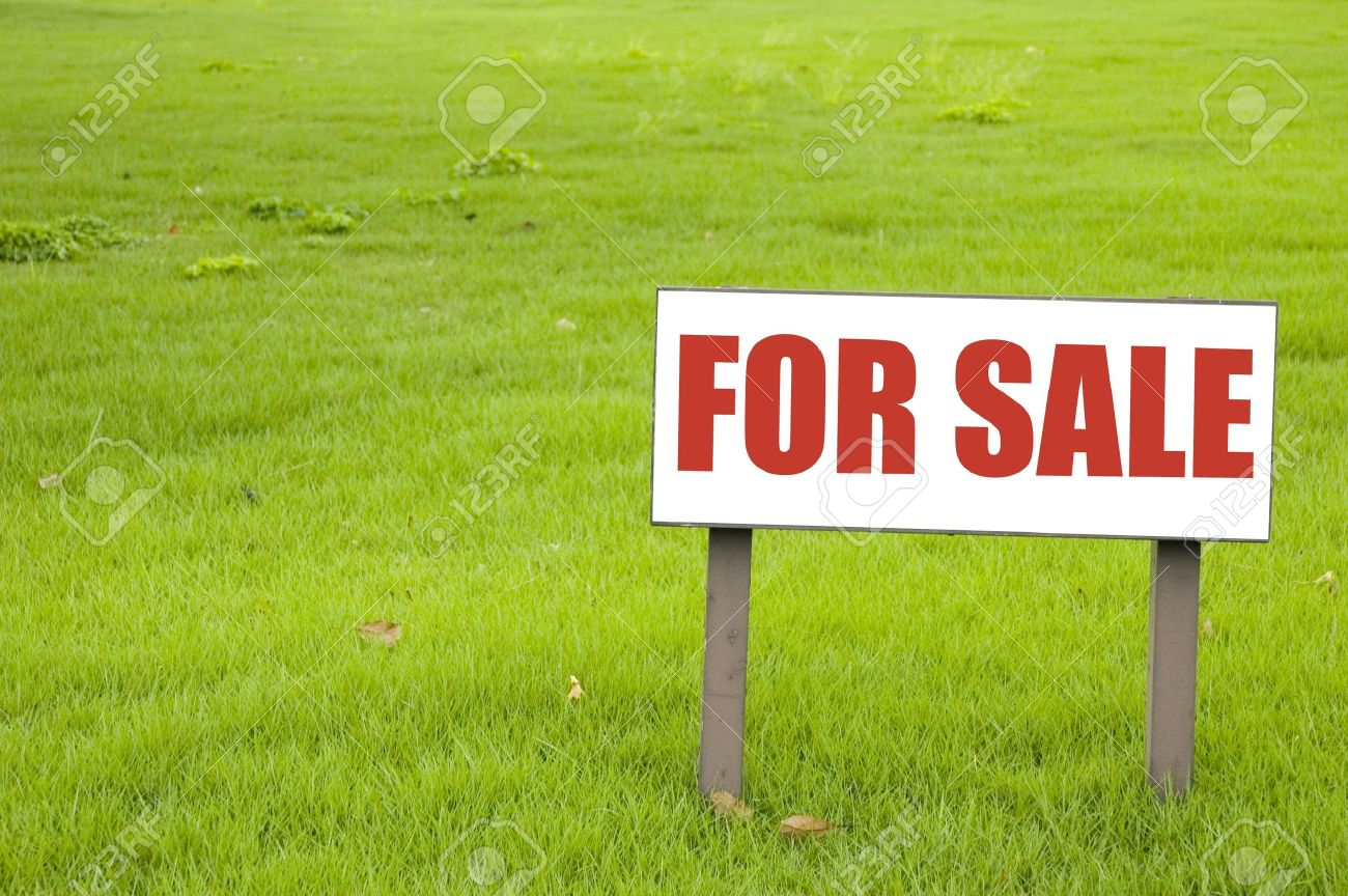 For sale sign on green grass stock photo 8634387
