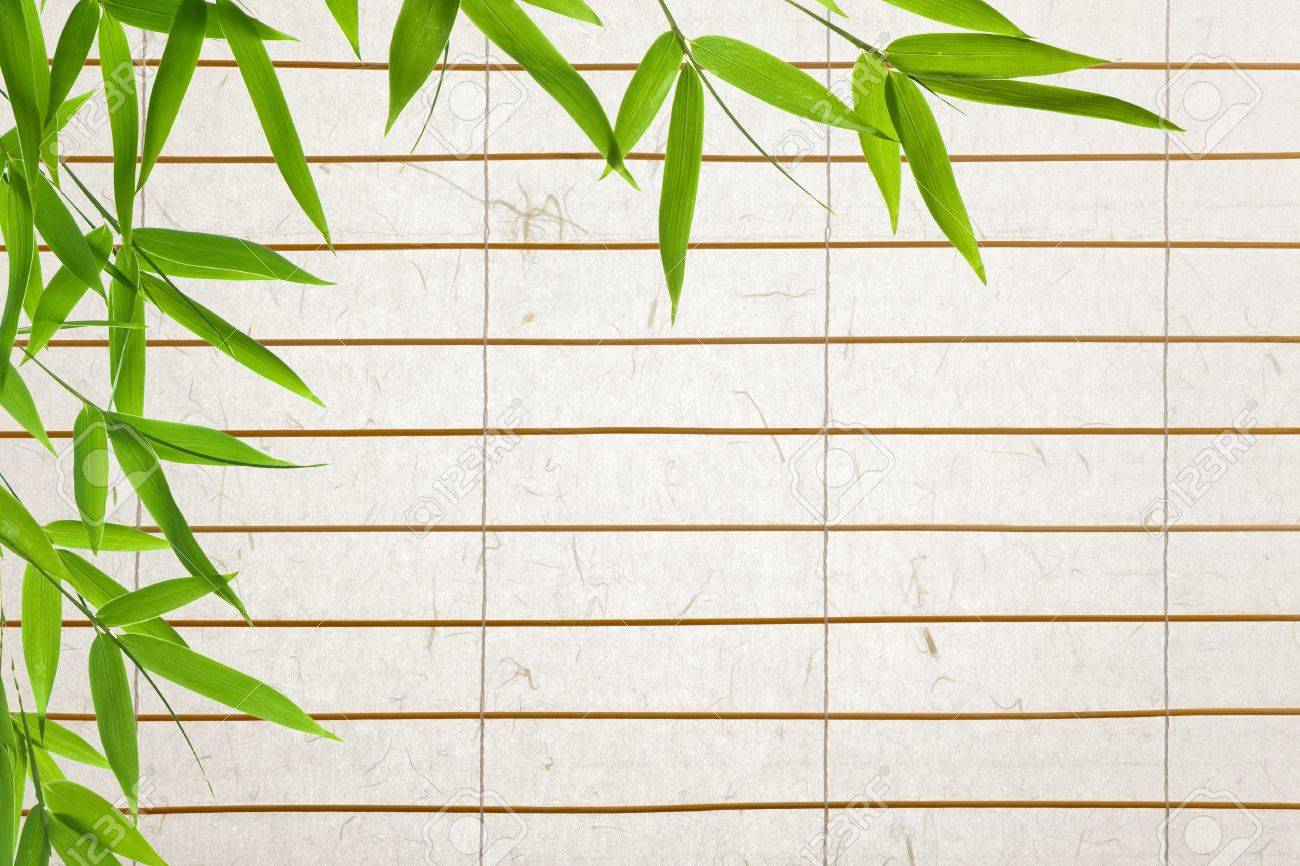 Paper Bamboo Blinds Rice Paper Blinds With