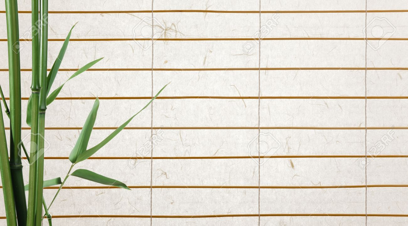 Rice Paper Blinds With Bamboo Leaves Stock Photo Picture And Royalty Free Image Image 8814410