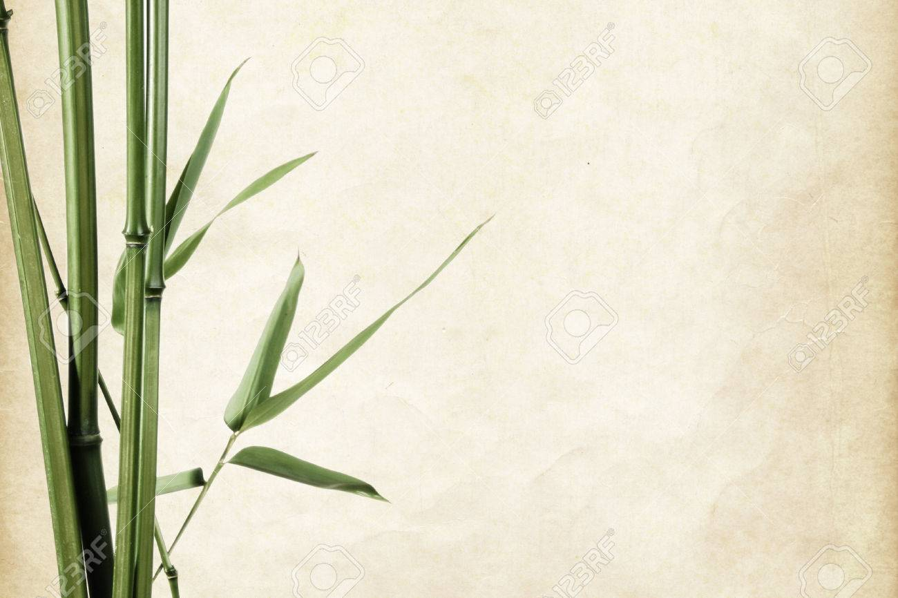 bamboo leaves border on vintage old paper background with copy space - 34654880