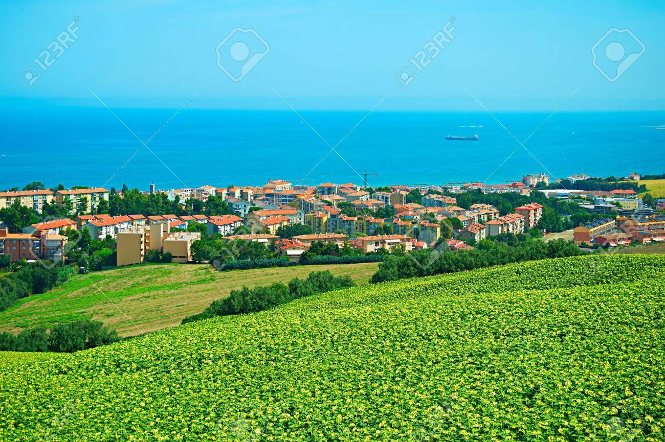 Paesaggio Con Il Campo Di Girasoli E Piccola Città Sulla Costa Del ...