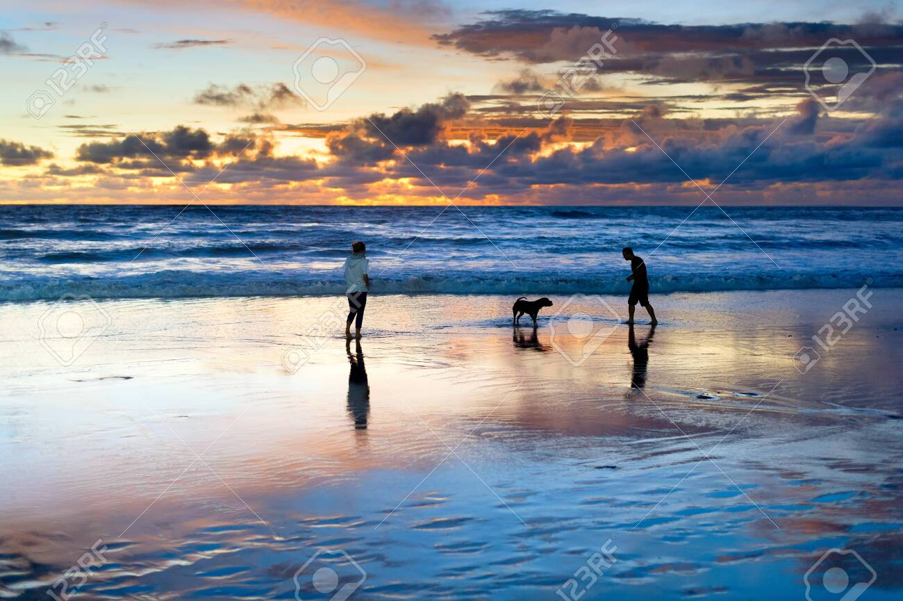 Couple playing on beach with dog, scenic sunset seascape in background, Bali, Indonesia - 121363455